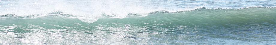 海と写真と本が好きなシステム屋のブログ Rotating Header Image